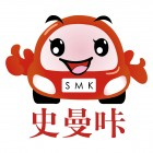 杭州车智安科技有限公司
